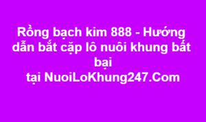 Rồng bạch kim 888